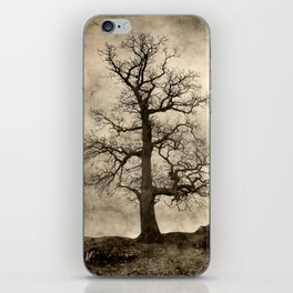 Tree At Park Brow iPhone Skin