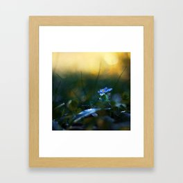 The Incendiary Forest Framed Art Print
