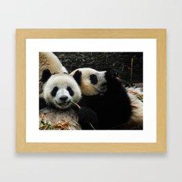 Friends are for Chillin' Framed Art Print