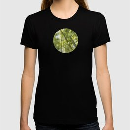 Bamboo Bokeh T-shirt