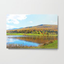 New Hampshire  Metal Print