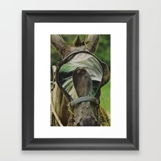 dp2 Framed Art Print