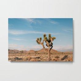 Joshua Tree National Park II Metal Print