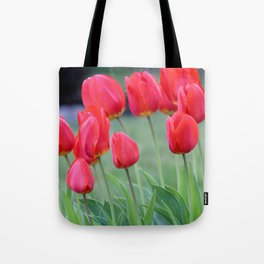 Ruby Red Tulips Tote Bag