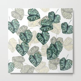 Philodendron Leaves on White  Metal Print