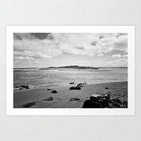 Beach - New Zealand South Coast Art Print