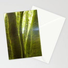 Linden tree trunks, surrounded by humid silent mosses, La Palma island, Spain Stationery Cards