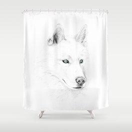 Saber :: A Siberian Husky Shower Curtain