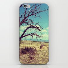 New Mexico 8 iPhone & iPod Skin