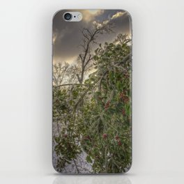 Glaze #9 iPhone Skin