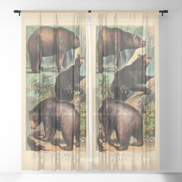 North American Bears Sheer Curtain