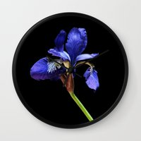 iris Wall Clocks featuring Iris by Artemio Studio