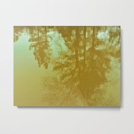 Morning Meditation - tree reflections in a calm pond photo Metal Print