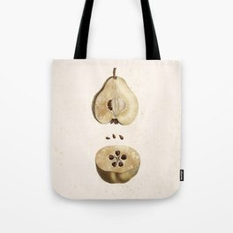 Pear Disection Botanical Illustration Tote Bag