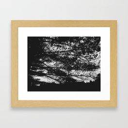 Autumn 3 Framed Art Print