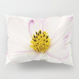 Sensation Cosmos White Bloom Pillow Sham