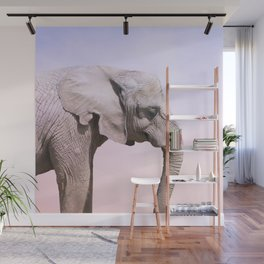 Elephant and Sunset Photography Wall Mural