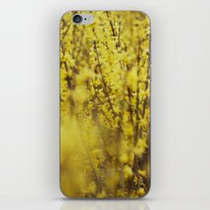 yellow flowers iPhone Skin