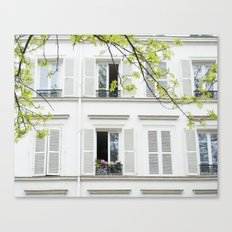 White, white windows Canvas Print