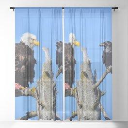 Avian Showdown Sheer Curtain