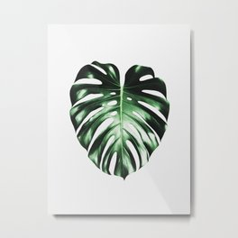 Plant, Leaf, Monstera, Nature, Modern art, Art, Minimal, Wall art Metal Print