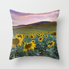 Wonderful Sunflowers. Pink Sunrise Throw Pillow