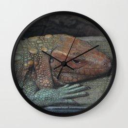 Northern Caiman Lizard Wall Clock