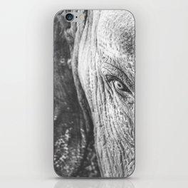 Gentle Giant (black + white) iPhone Skin