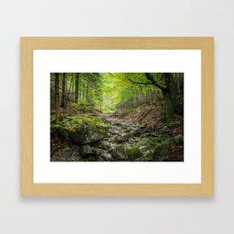 The autumn valley Framed Art Print