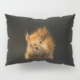 squirrel in the dark Pillow Sham