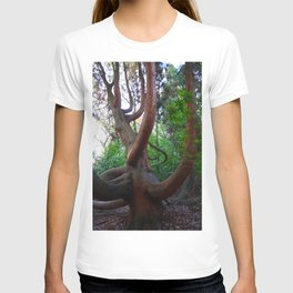 Giant Willow T-shirt