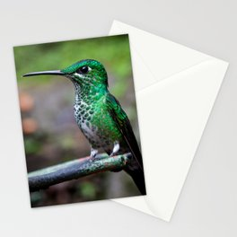 Green-crowned brilliant hummingbird Stationery Cards