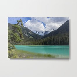 Joffre colours Metal Print