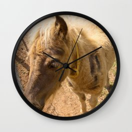Portrait of a young miniature horse Wall Clock