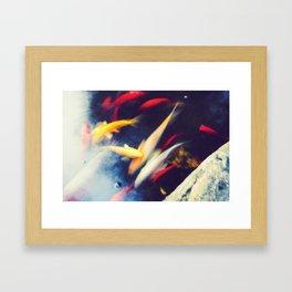 Carps Framed Art Print
