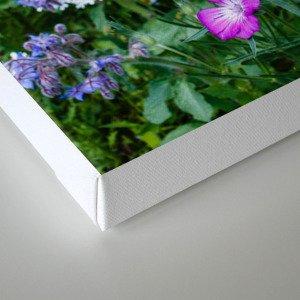 Wild Flower Meadow Canvas Print