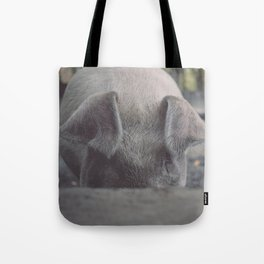 Pig in Oconaluftee Tote Bag