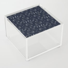 Serpentine Acrylic Box