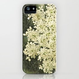 Botanical - Queen Anne's Lace, Bishops Lace Flower iPhone Case