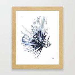 Scorpleonfish 1 Framed Art Print