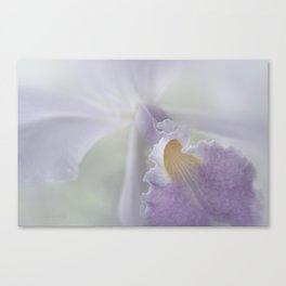 Beauty in a Whisper Canvas Print
