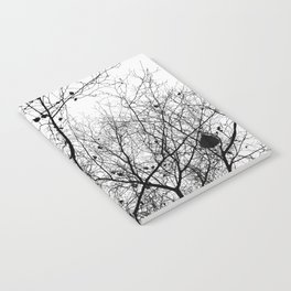 Nature in black and white Notebook