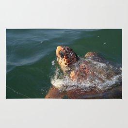 Loggerhead Turtle (Caretta Caretta) Breaking The Sea Surface Rug