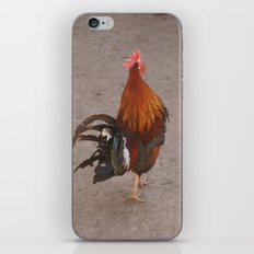 Runaway Chicken iPhone & iPod Skin