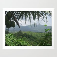 Puerto Rico Scenery Art Print