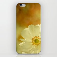 The last flower of autumn iPhone & iPod Skin