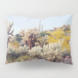 Arizona Color Pillow Sham