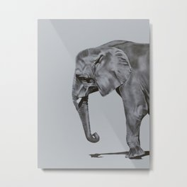Ivory - Elephant Painting in Black & White Metal Print