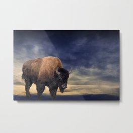 American Buffalo against an Evening Sky Metal Print