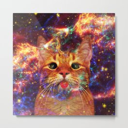 Silly Cat Metal Print
